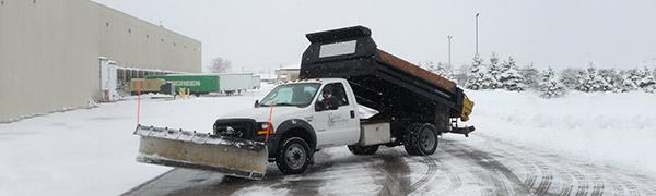 Natural Surroundings Snow Plow